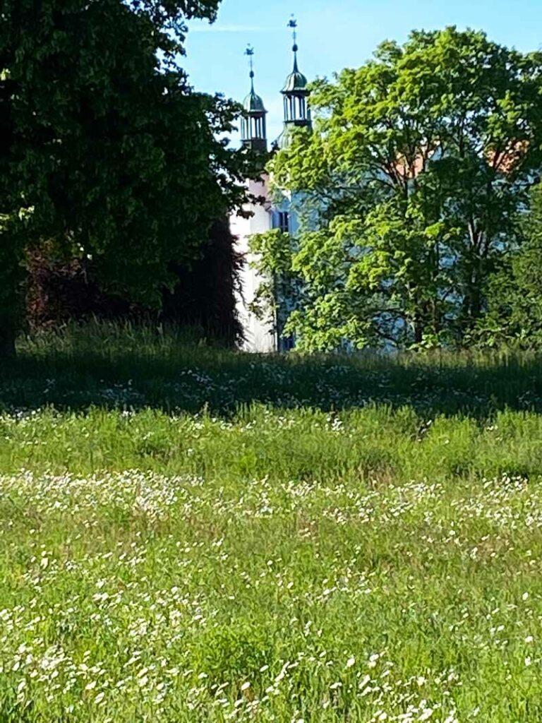 Blumenwiese Schloss Ahrensburg